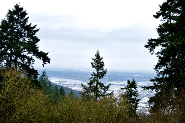View from Pittock Mansion 2 | Land of Laurel