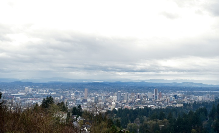 View from Pittock Mansion 1 | Land of Laurel