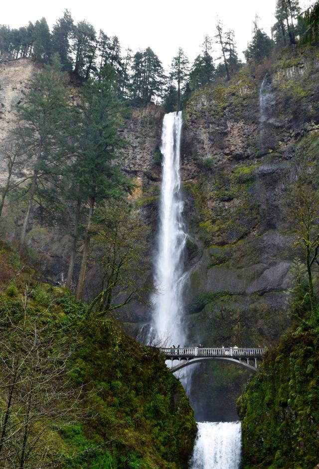Multnomah Falls | Land of Laurel