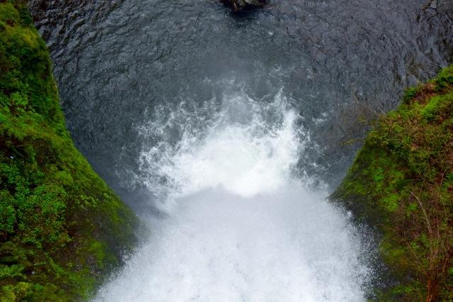 Multnomah Falls 4 | Land of Laurel