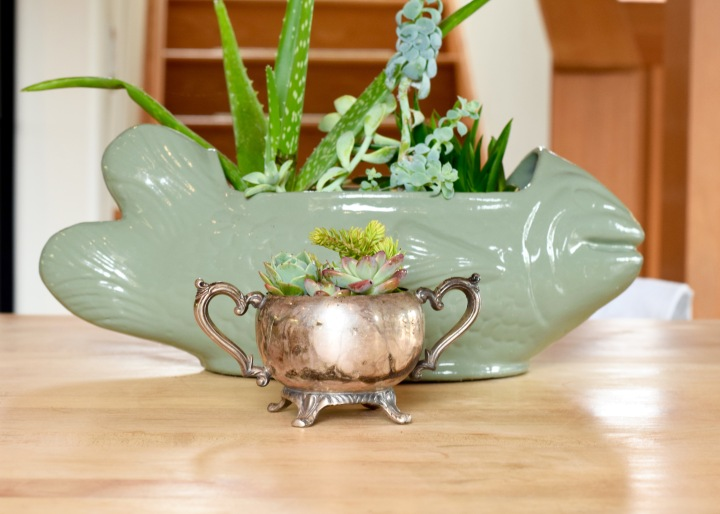 Sterling Silver Sugar Bowl Succulent Planter | Land of Laurel