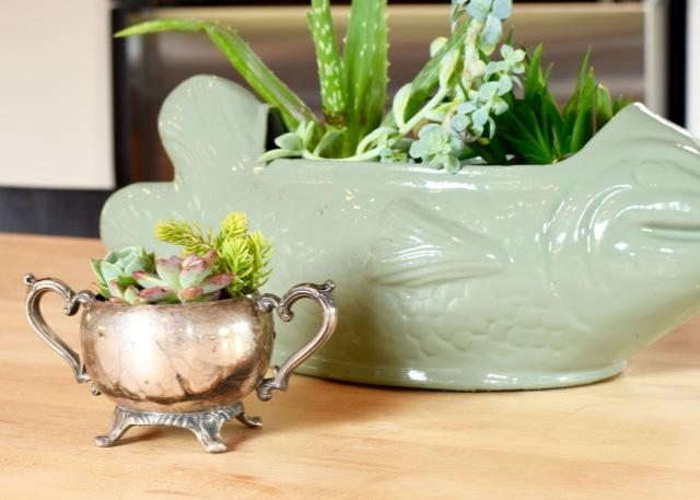 Sterling Silver Sugar Bowl Succulent Planter | Land of Laurel