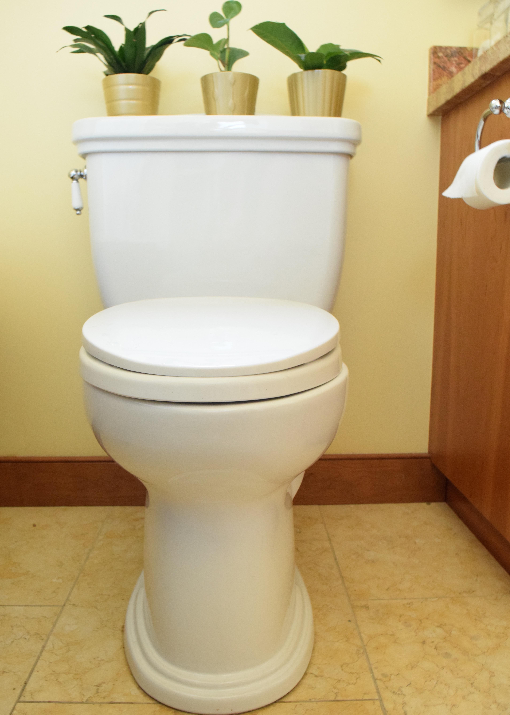 Bungalow Bathroom Toilet | Land of Laurel