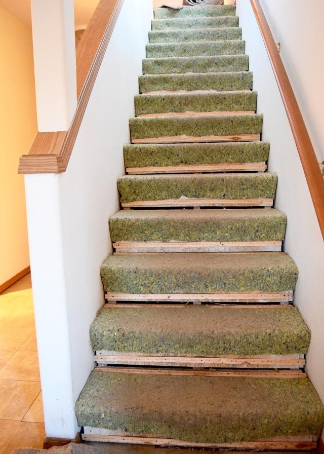 Stairs Carpet Pad   Land of Laurel