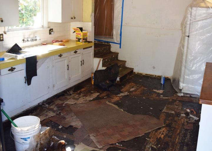 Berrybrier   Kitchen Floors.jpg