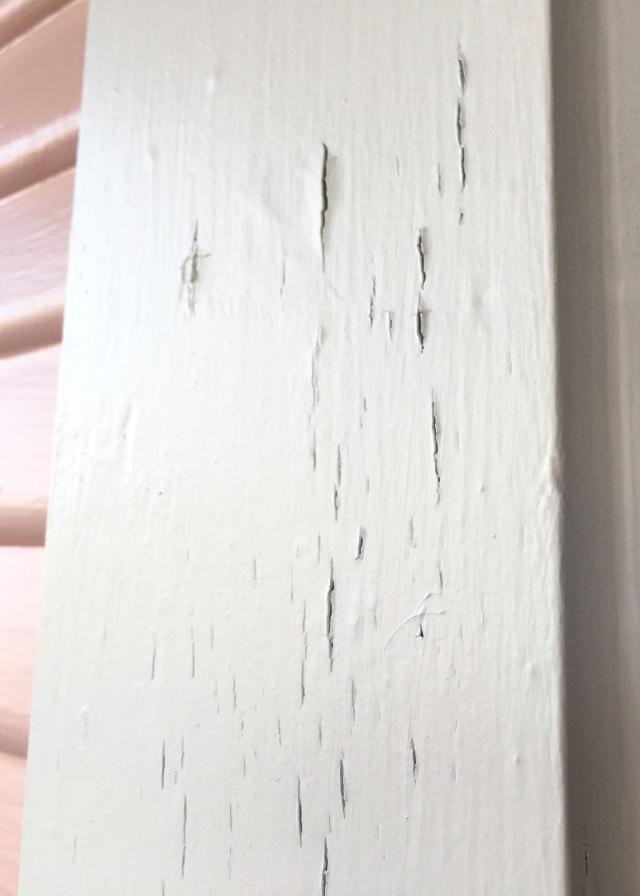 Berrybrier | Flaking Paint.jpg