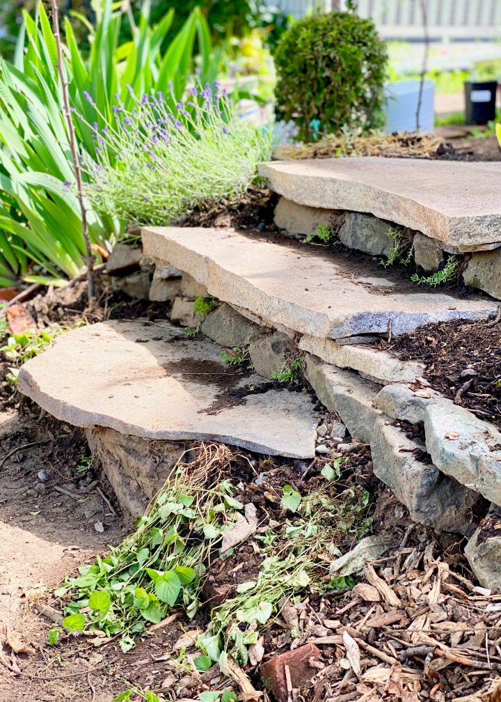 Building DIY Stone Steps and Other Garden Progress – week 4